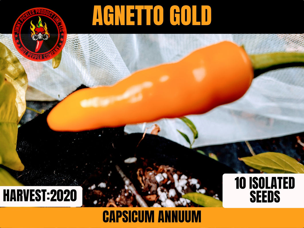Agnetto Gold (Capsicum Annuum) Low Heat-Mid Hot- 10 Isolated Seeds