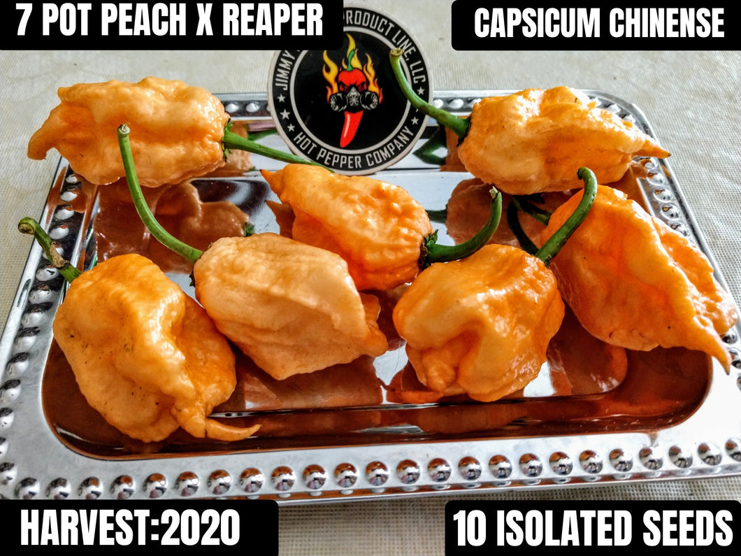 RK 7 Pot Peach X Reaper (Capsicum Chinense) Super Hot- 10 Isolated Seeds