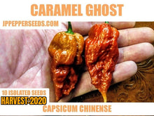 Load image into Gallery viewer, Caramel Ghost (Capsicum Chinense) Super Hot-10 Isolated Seeds