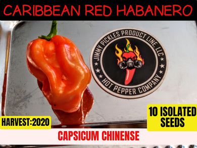 Caribbean Red Habanero (Capsicum Chinense) Hot- 10 Isolated Seeds