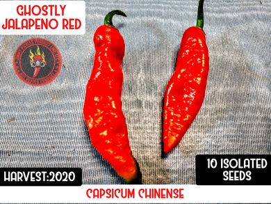 Ghostly Jalapeno (Capsicum Chinense) Super Hot-10 Isolated Seeds