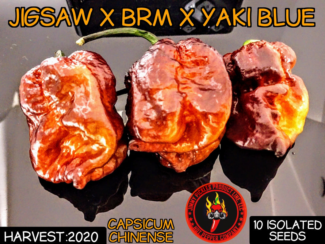 Jigsaw X BRM X Yaki Blue (Capsicum Chinense) Super Hot- 10 Isolated Seeds