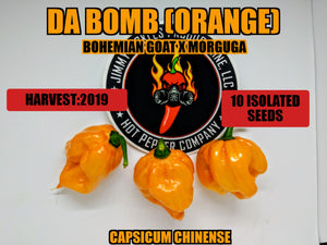 Da Bomb Orange (Capsicum Chinense) -Super Hot-10 Isolated Seeds