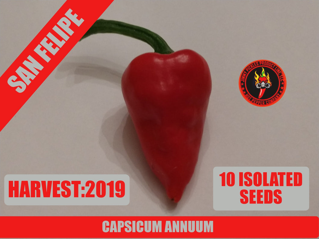 San Felipe-Heirloom (Capsicum Annuum)-Low Heat-10 Isolated Seeds