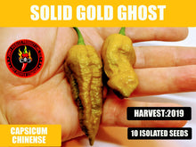 Load image into Gallery viewer, Solid Gold Ghost (Capsicum Chinense)-Super Hot- 10 Isolated Seeds