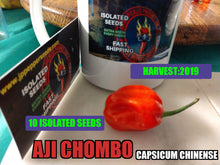 Load image into Gallery viewer, Aji Chombo/ Aji Panameno (Capsicum Chinense)-Hot- 10 Isolated Seeds