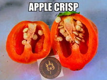 Load image into Gallery viewer, Apple Crisp (Capsicum Baccatum)-Low Heat-10 Isolated Seeds
