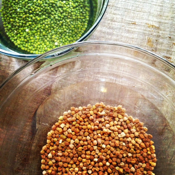 Sprouting 101: Soak, Drain, Sprout, and Eat in Less Than a