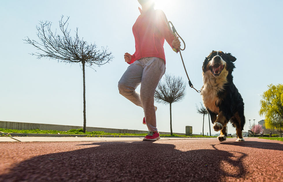 girl running outdoors with her dog