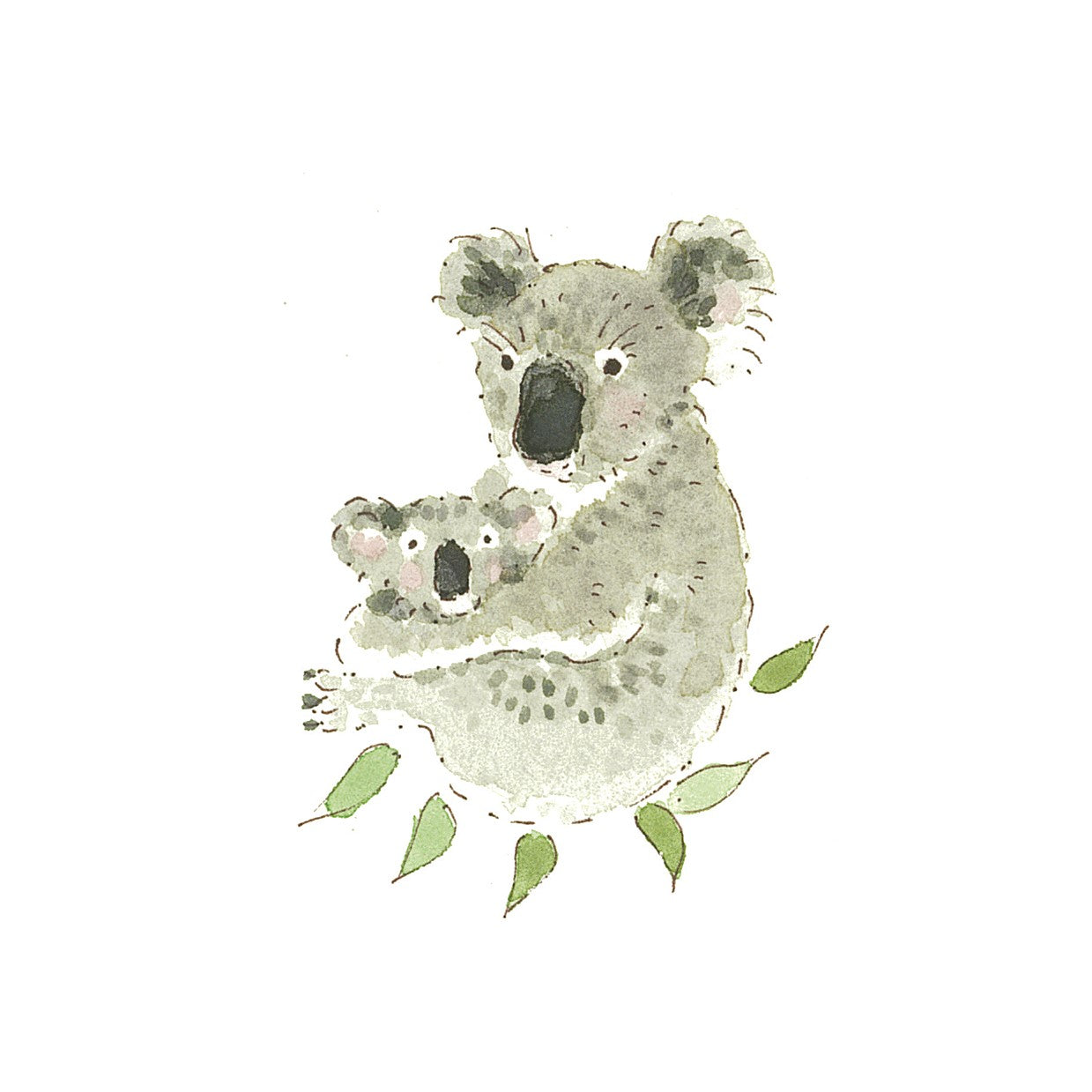 Sophie's Koala Cards raise money for Australian wildlife charity