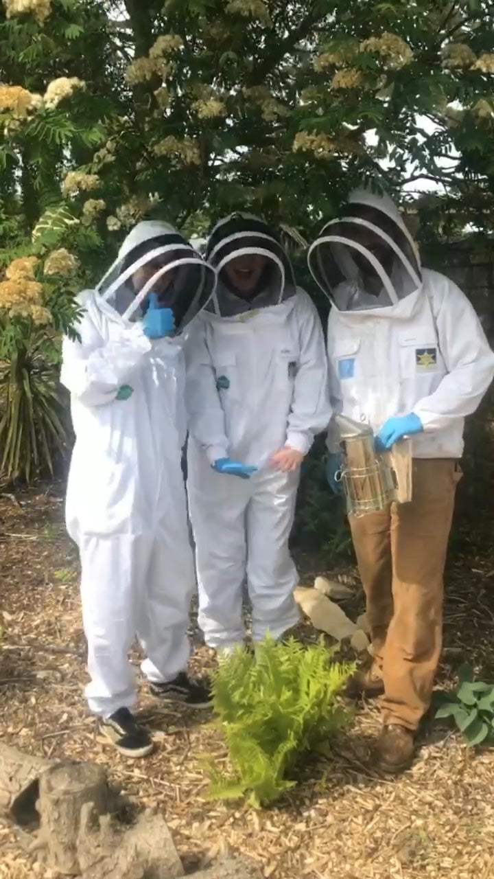 Visit to the Sophie Allport bee hive