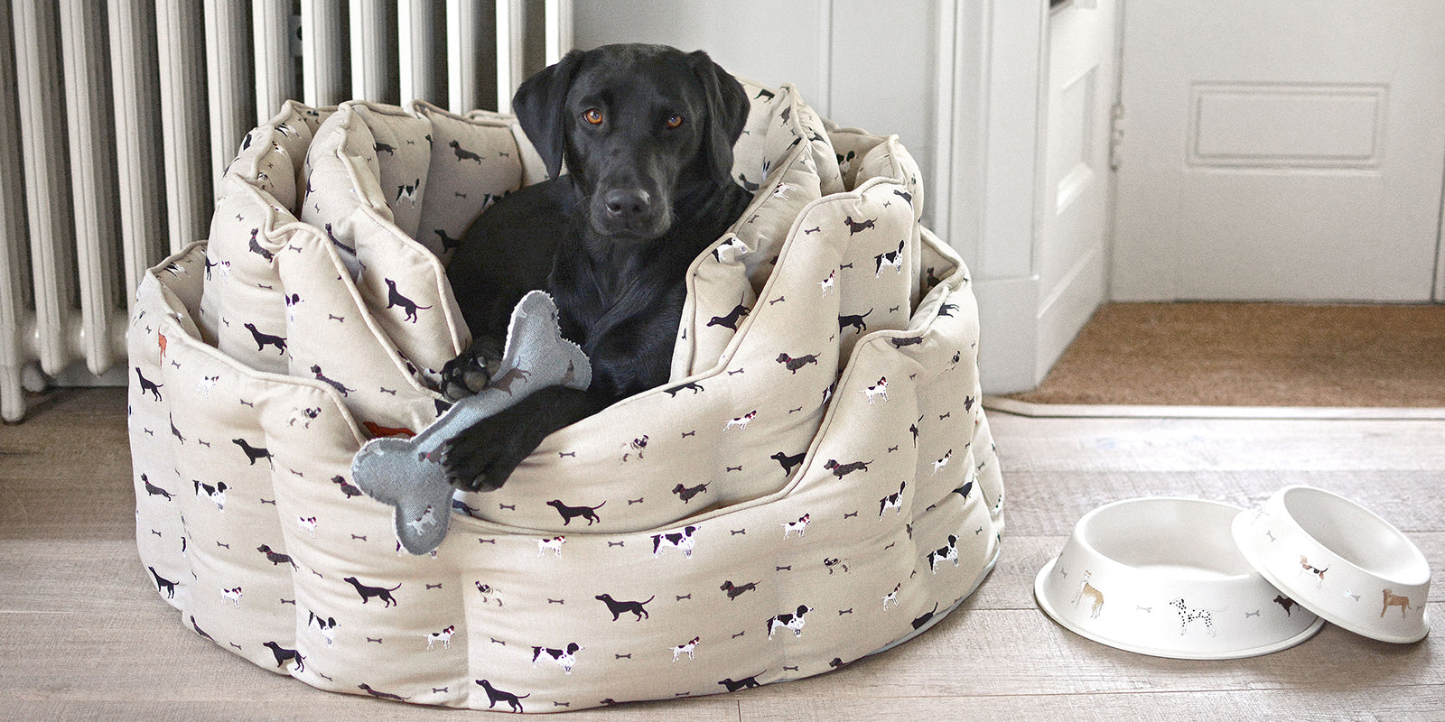 Pets Beds by Sophie Allport