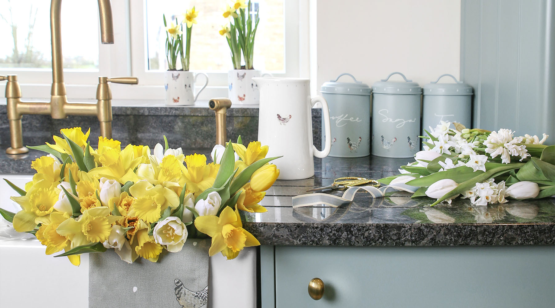 Chicken collection featuring hens by Sophie Allport