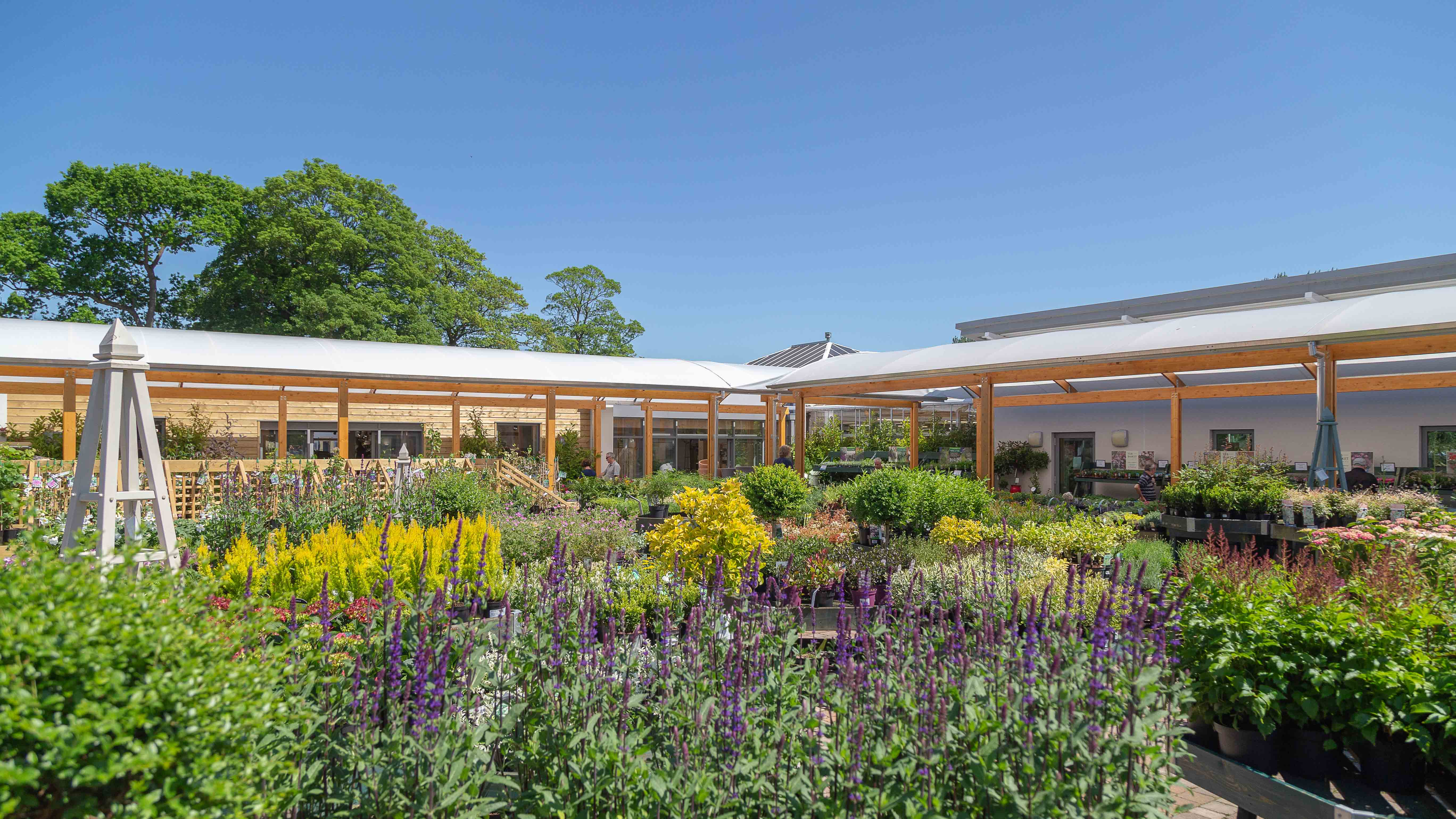 Q&A With Beetham Nurseries - June's Stockist Of The Month
