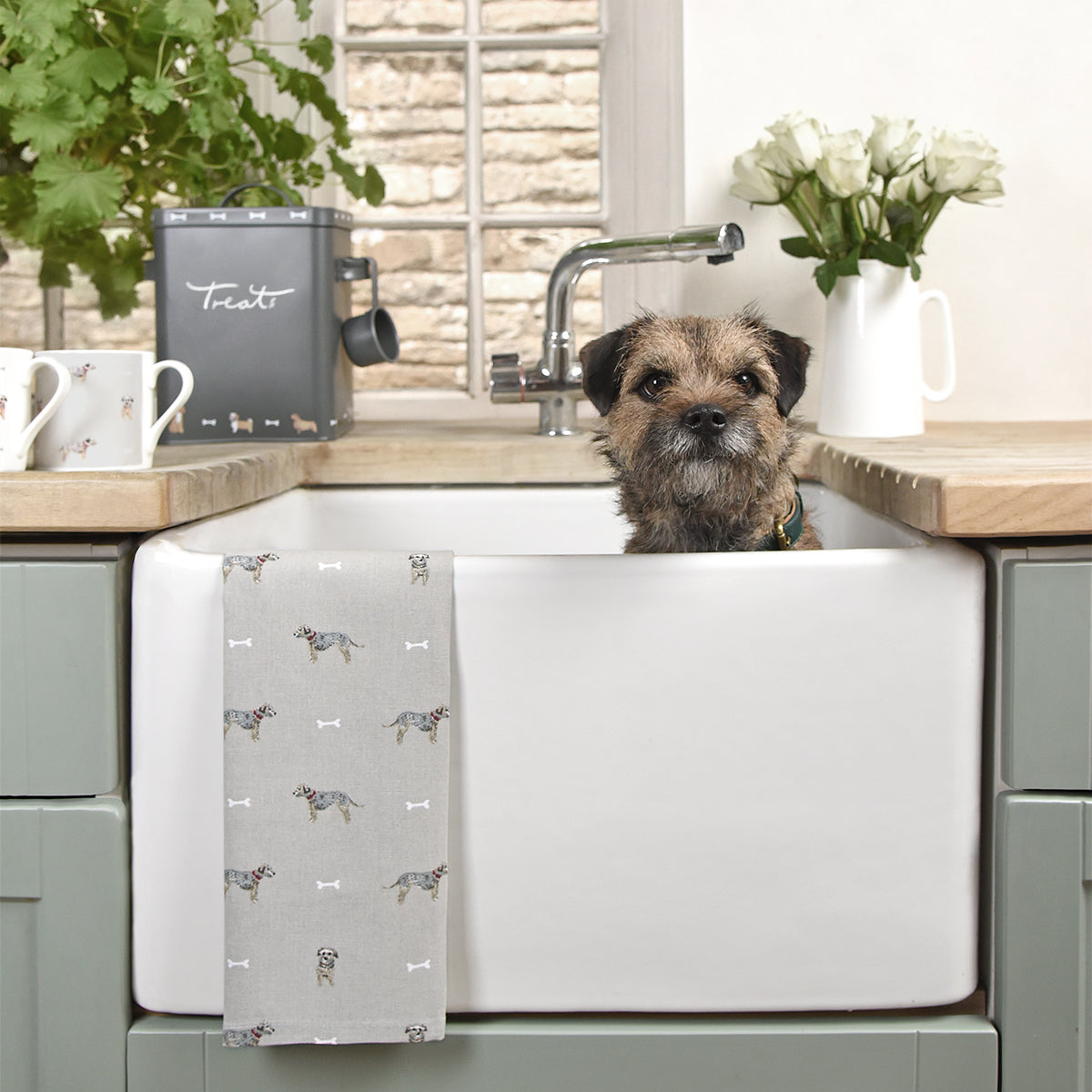 Terrier Collection by Sophie Allport