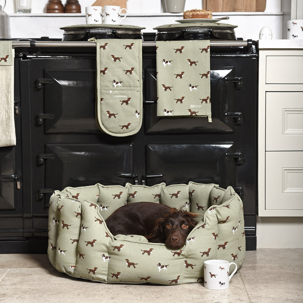 Shop Sophie Allport Dog Collections