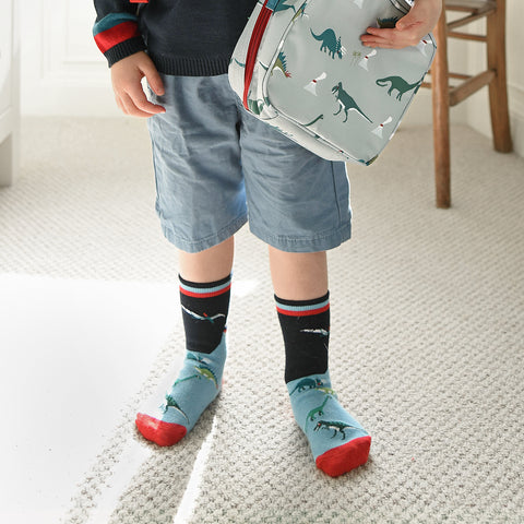 Dinosaur Kid's Socks by Sophie Allport