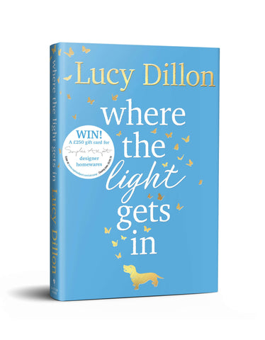 Lucy Dillon - Where the light gets in