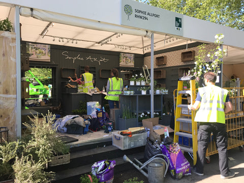 Sophie Allport stand at Chelsea Flower Show 2019