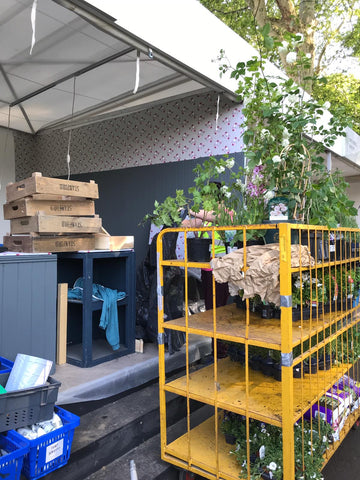 Sophie Allport stand build at Chelsea Flower Show 2019
