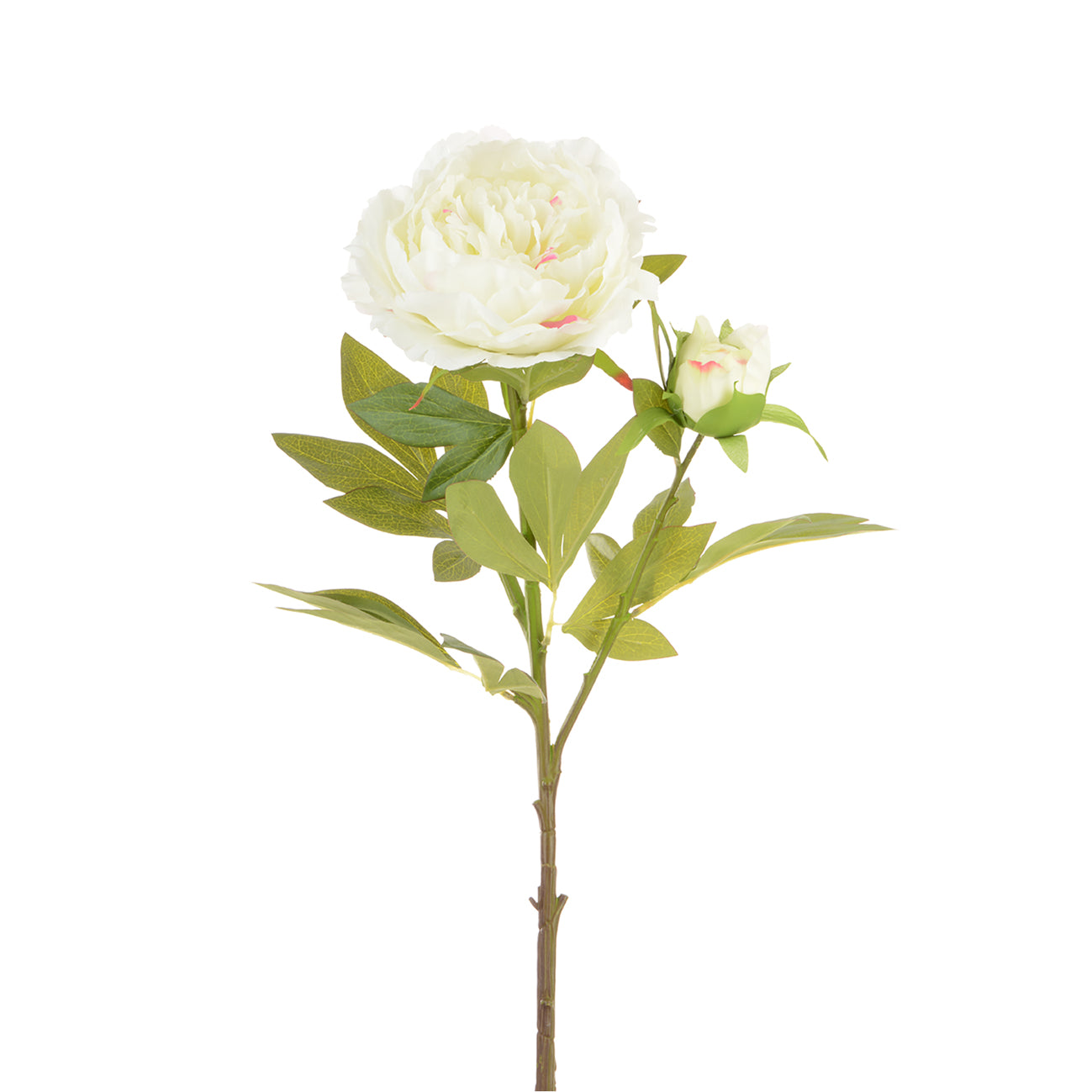 Faux white peony stem by Sophie Allport