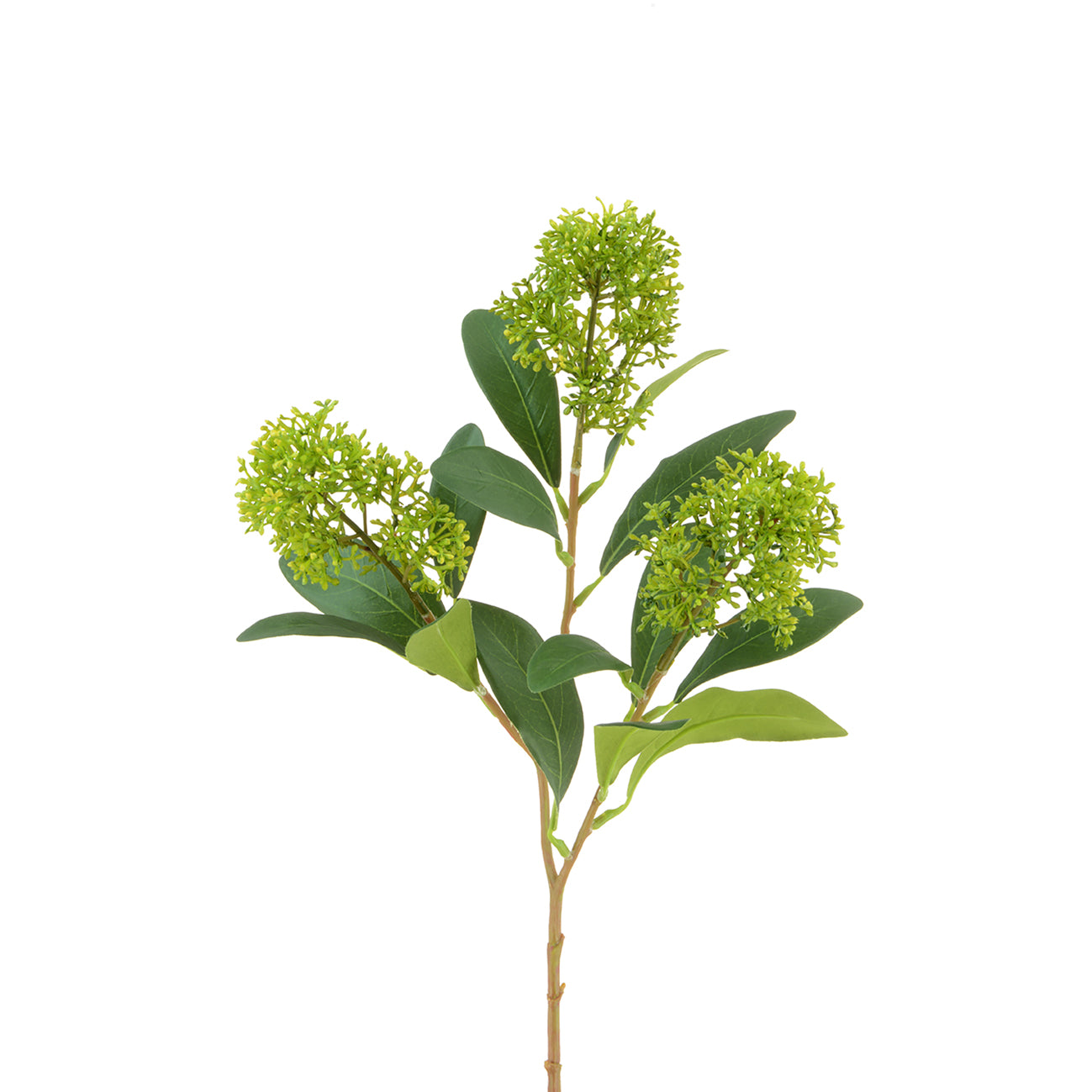 Faux Skimmia Spray by Sophie Allport