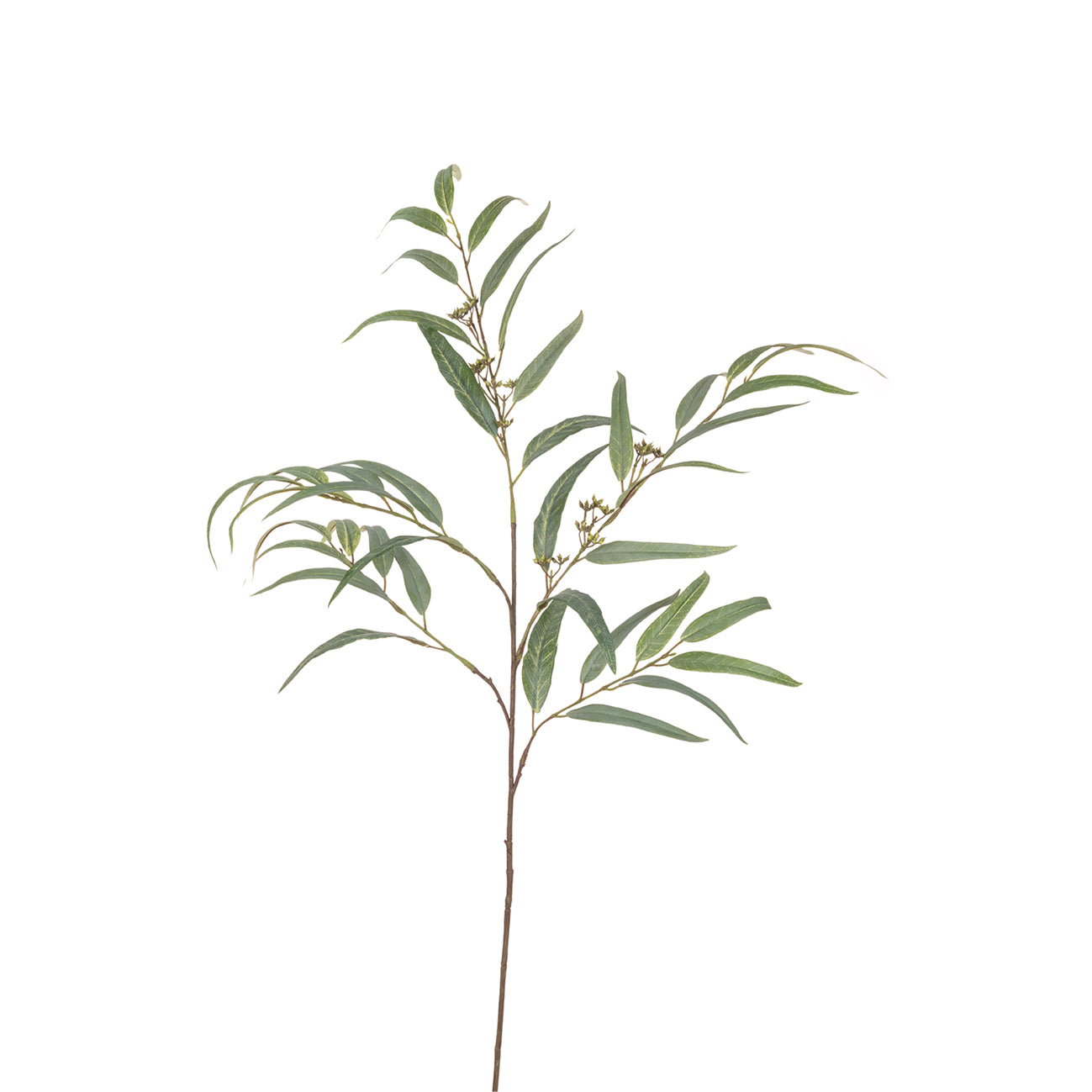 Faux Long Leaf Eucalyptus by Sophie Allport
