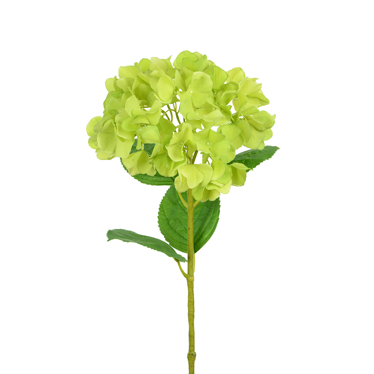 Artificial Hydrangea by Sophie Allport