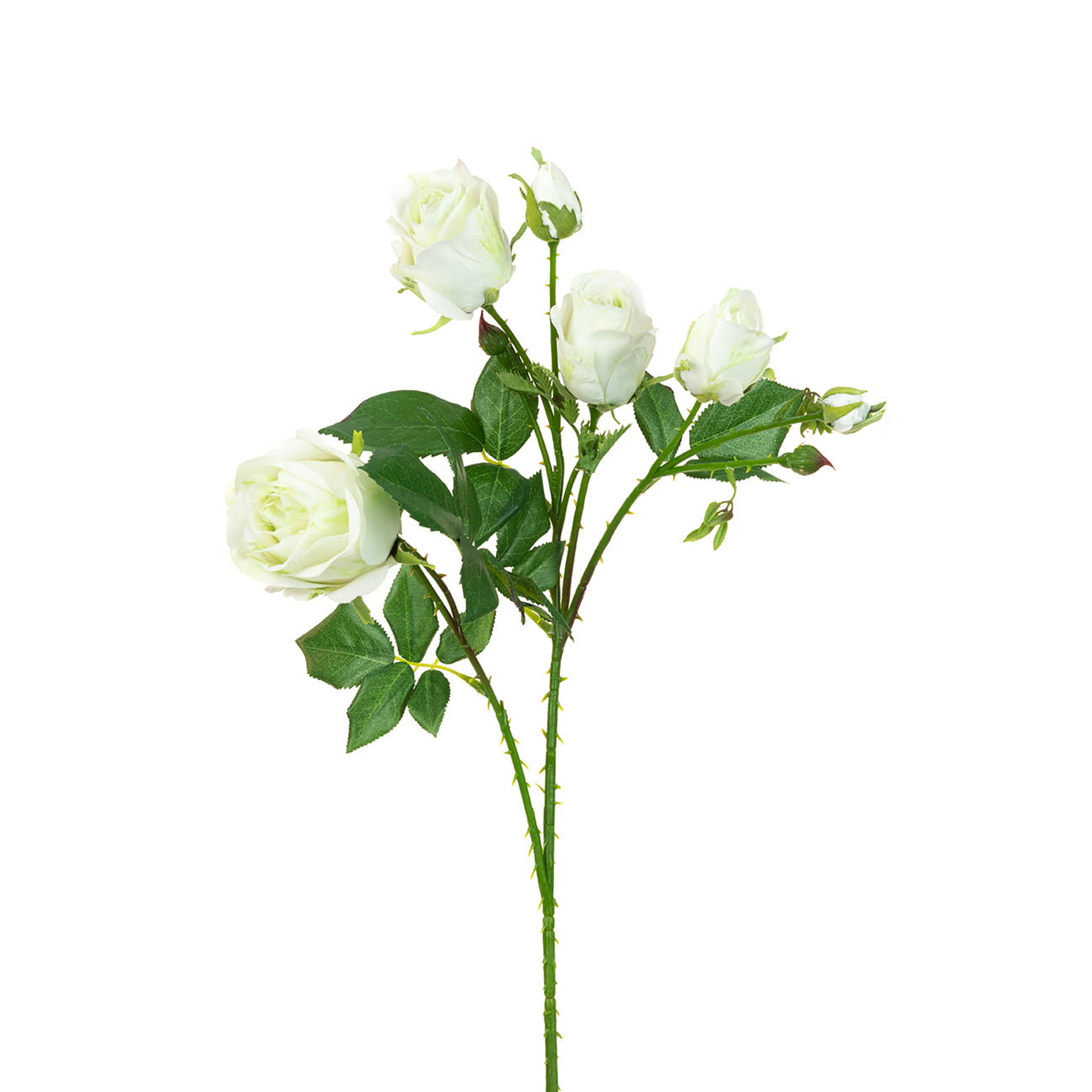 Faux White Garden Rose Stem by Sophie Allport