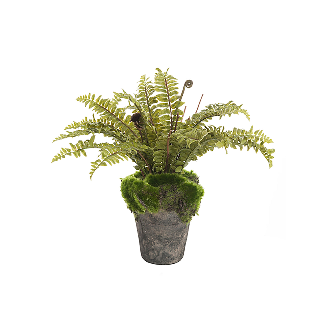 Faux fern plant by Sophie Allport