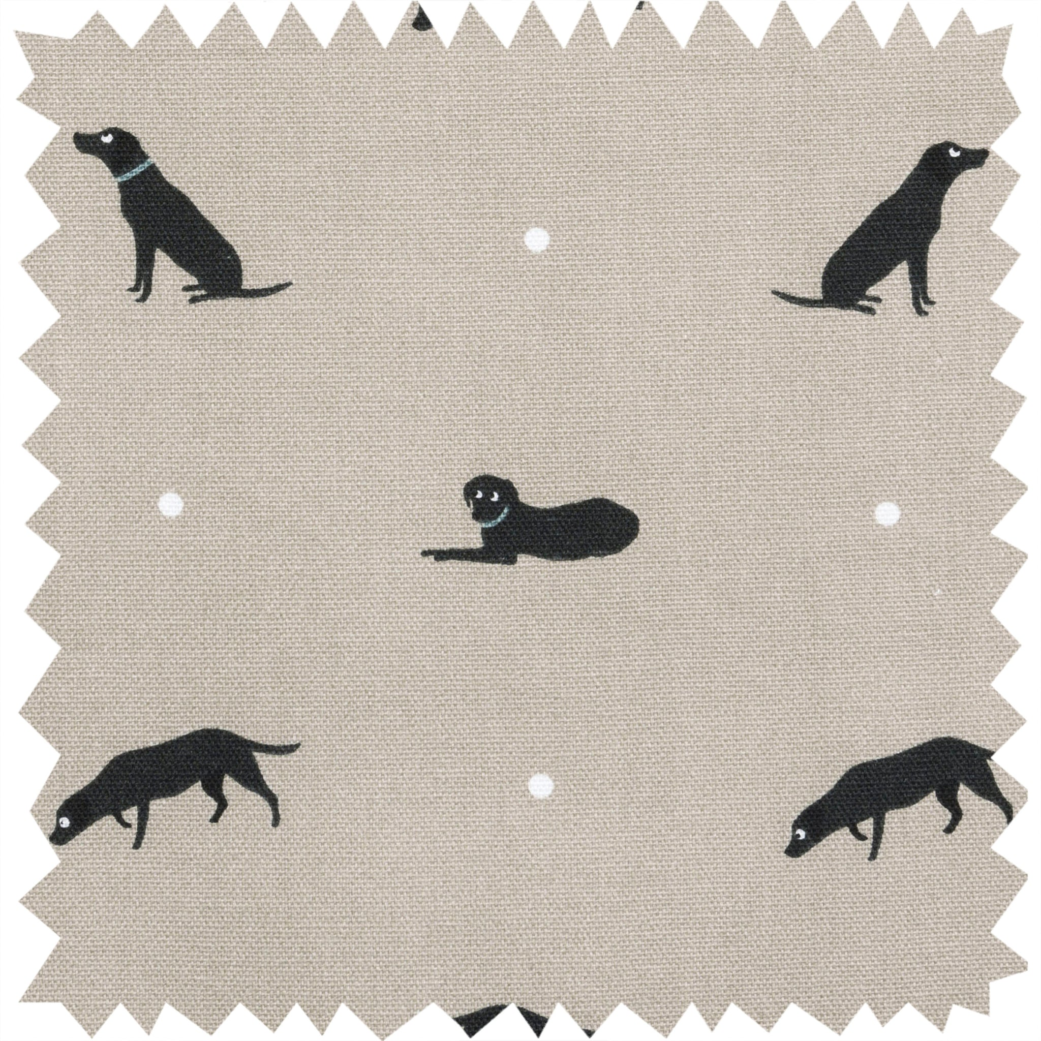 Labrador Fabric by the Metre