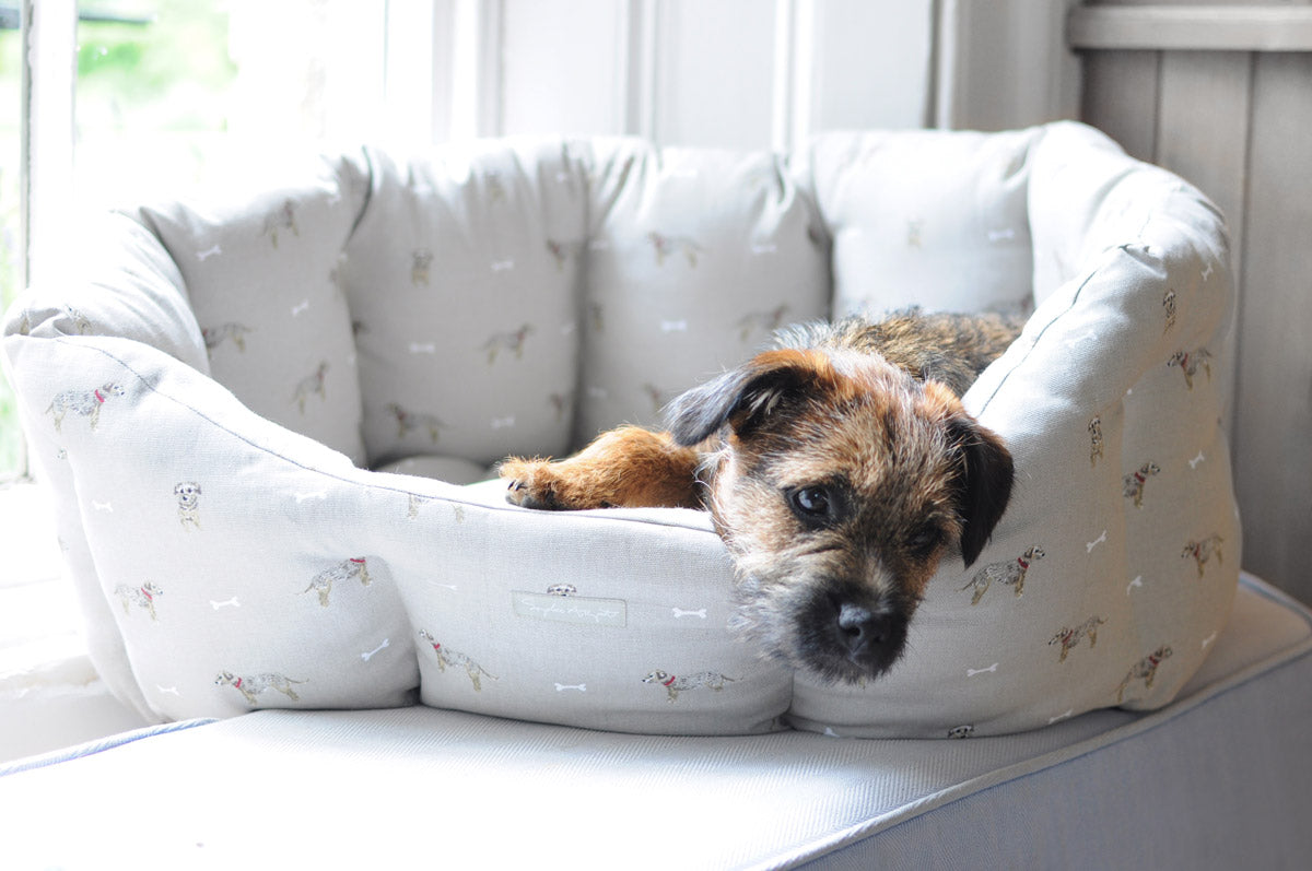 Terrier Pet Bed