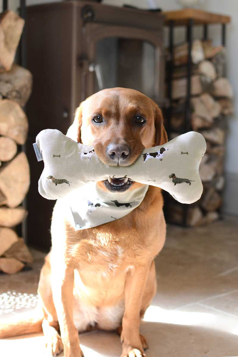 Dog Toy - Bone Toy - Woof