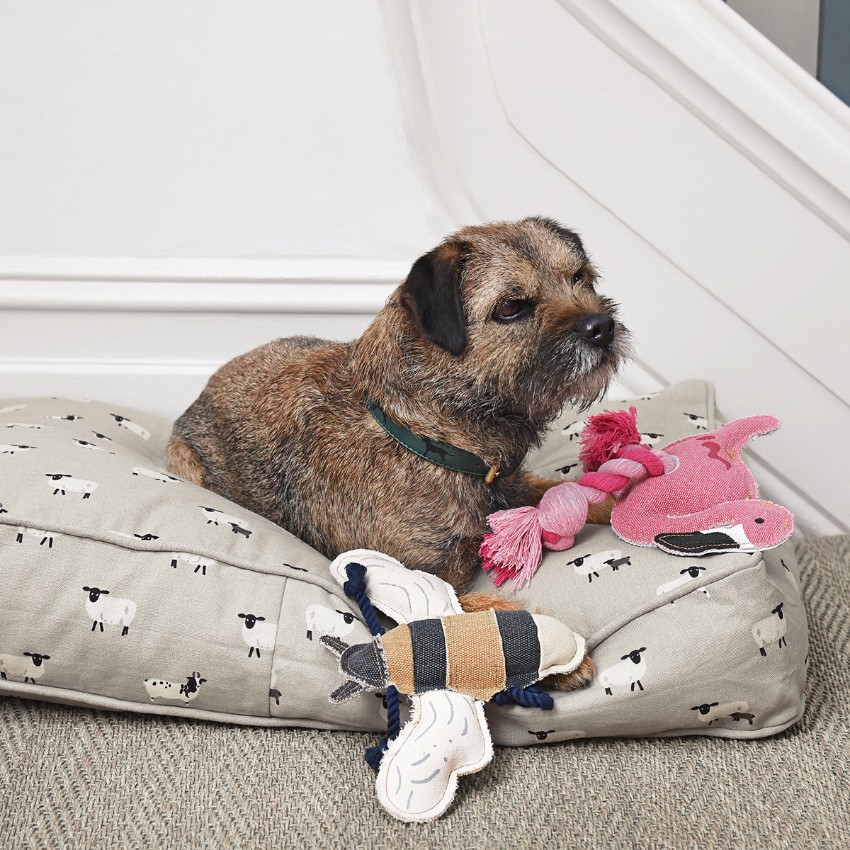 Dog sitting on Sophie Allport dog bed with Bee dog toy and flamingo dog toy