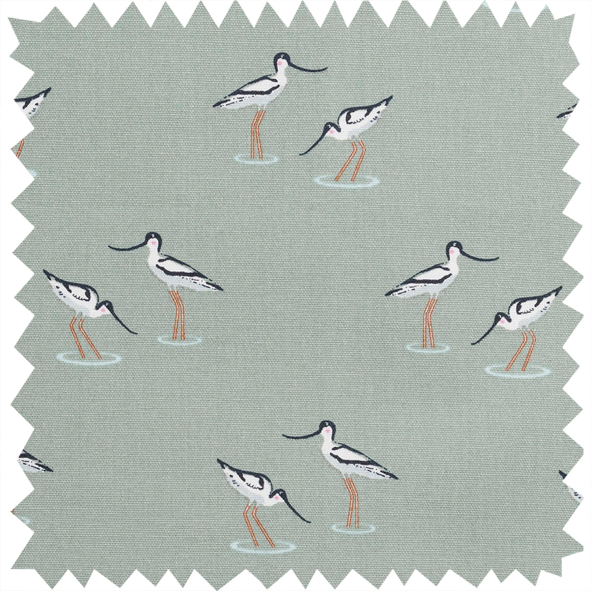Coastal Birds Fabric Sample by Sophie Allport