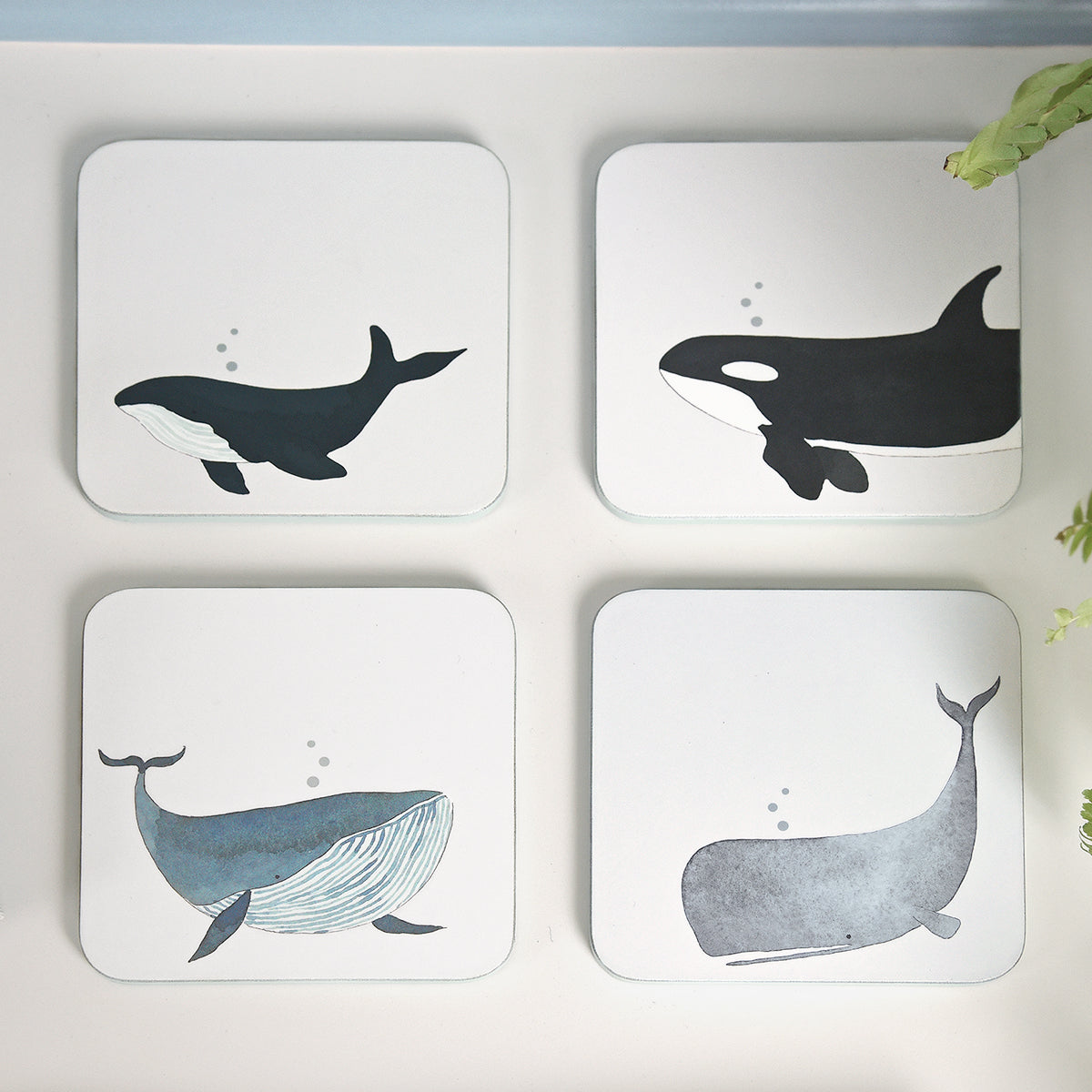 Whales Coasters (Set of 4)