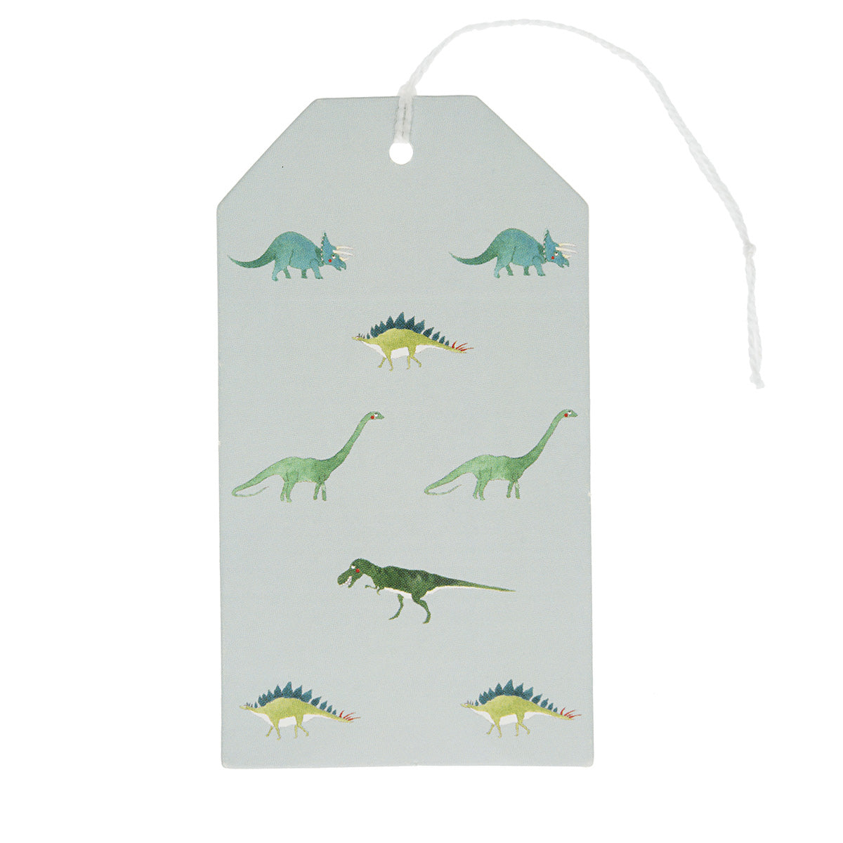 Dinosaurs Gift Tag