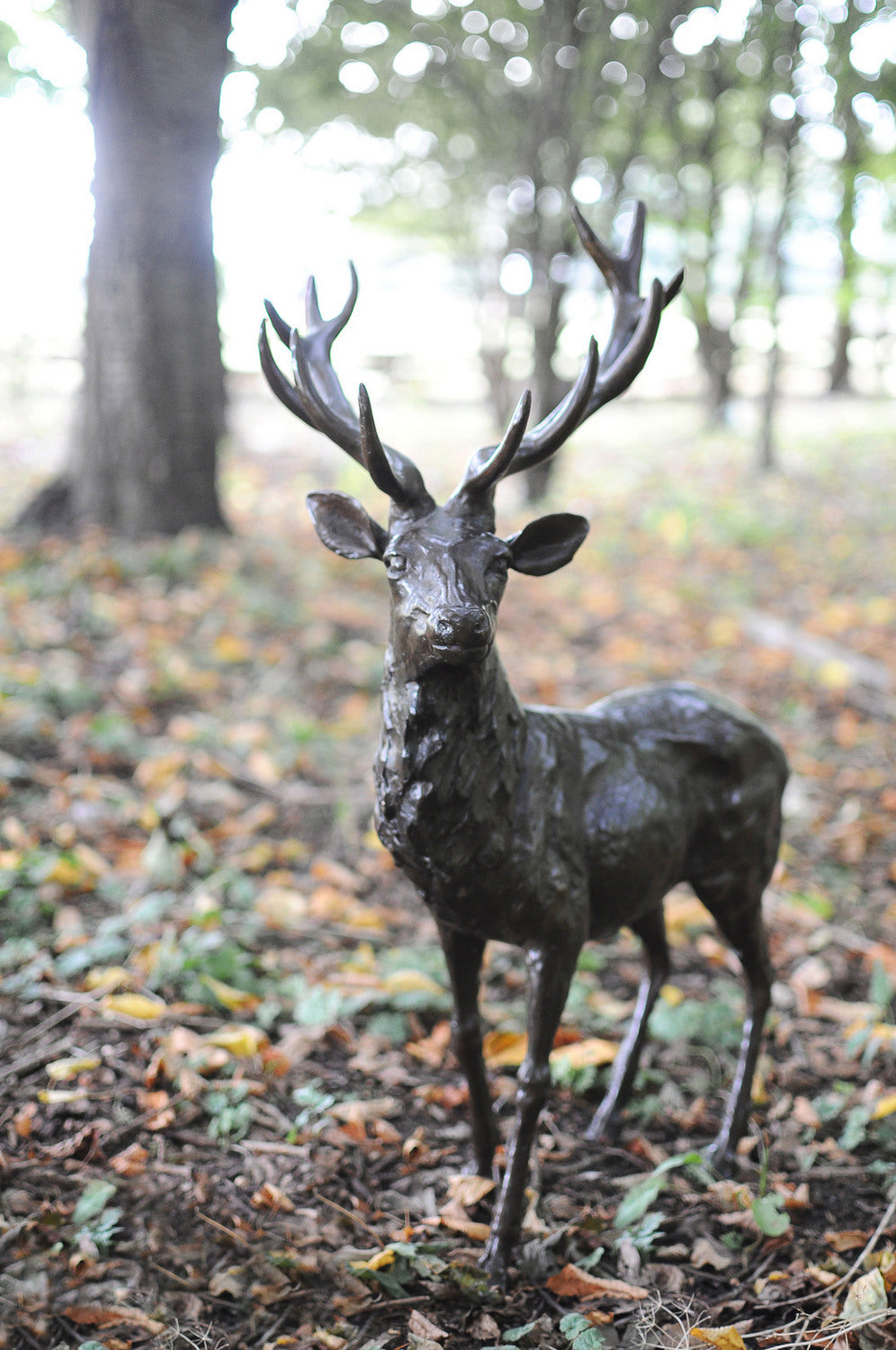Stag Bronze Sculpture
