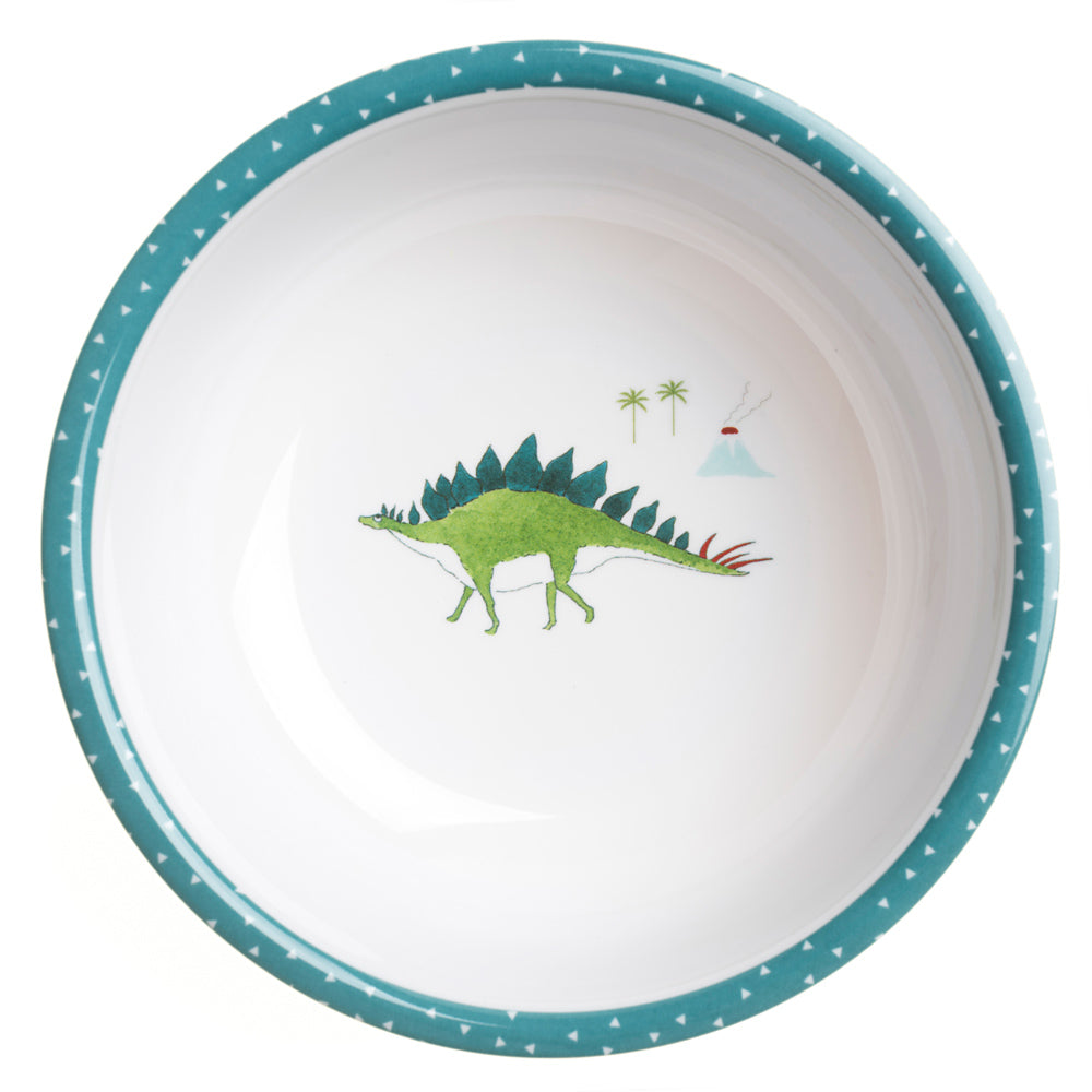 Dinosaurs Childrens Melamine Bowl