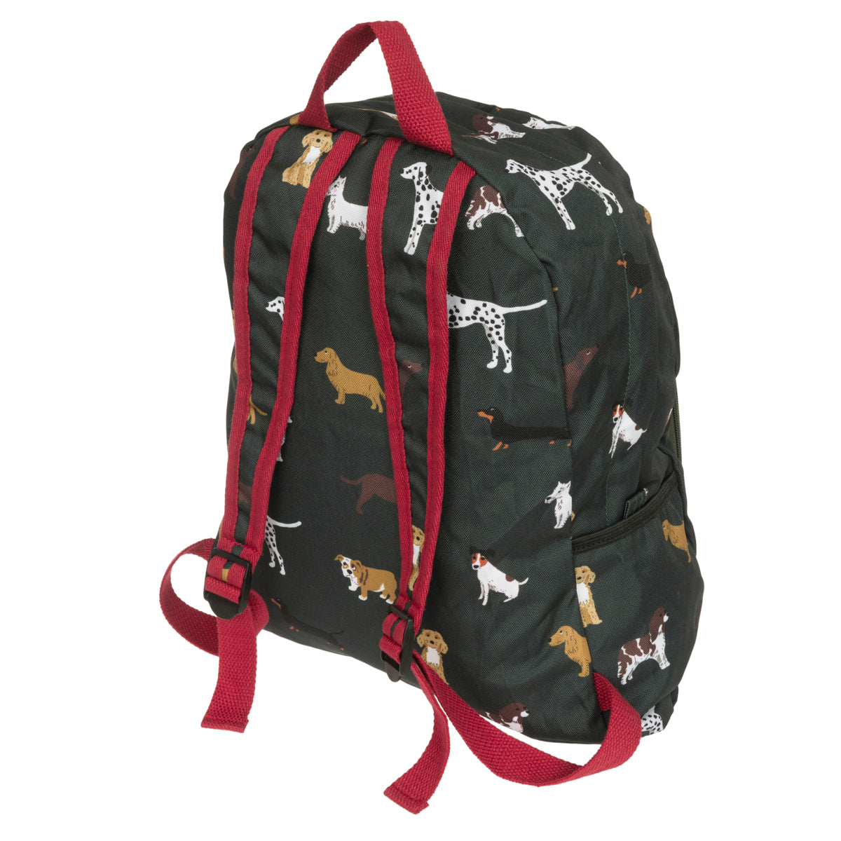 Fetch Folding Rucksack