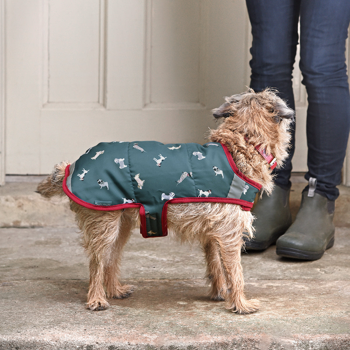 Walkies Dog Coat
