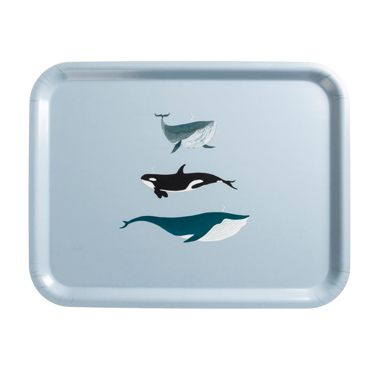 Whales FSC Birchwood Printed Tray by Sophie Allport