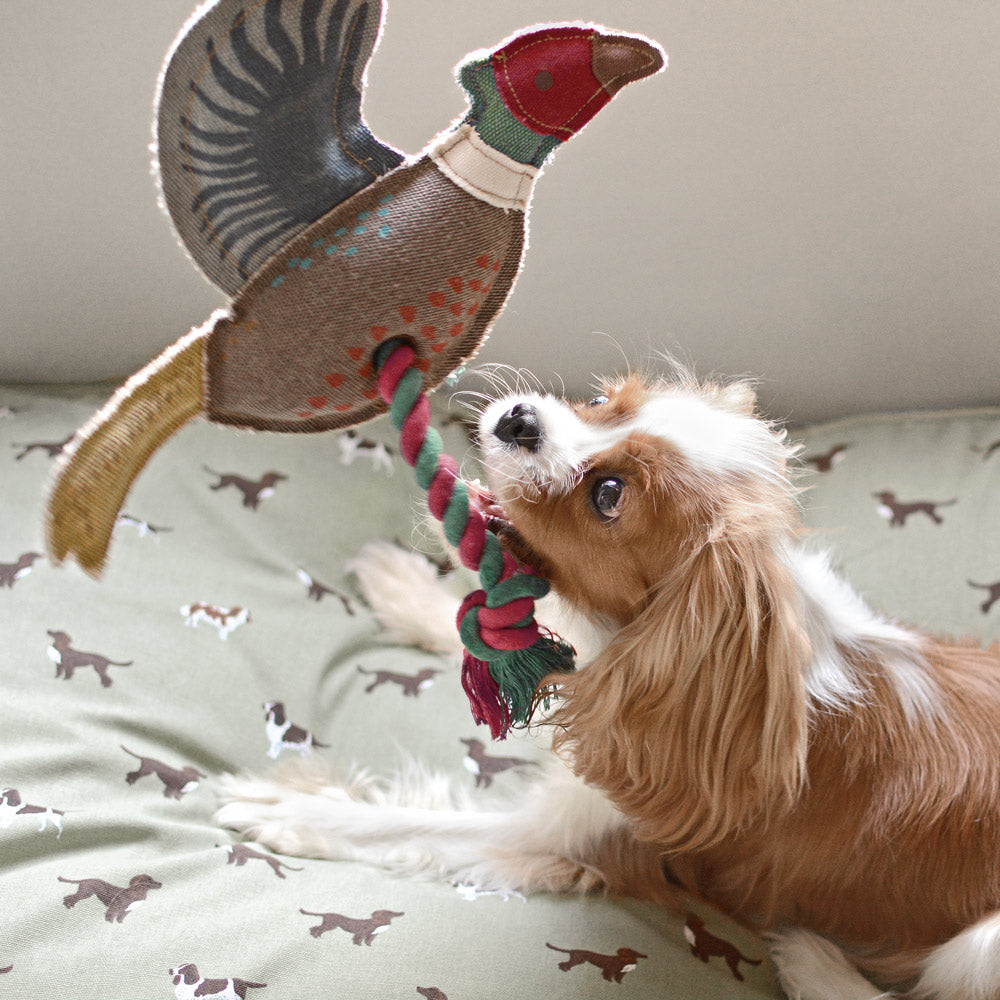 pheasant dog toy 3