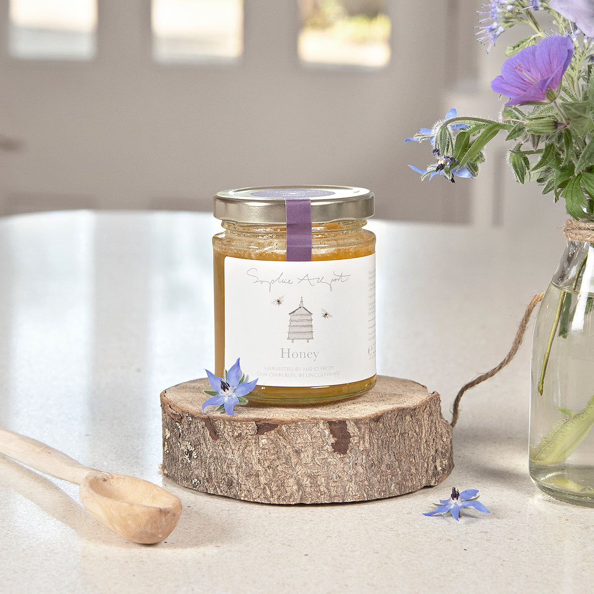 Echium British Honey by Sophie Allport