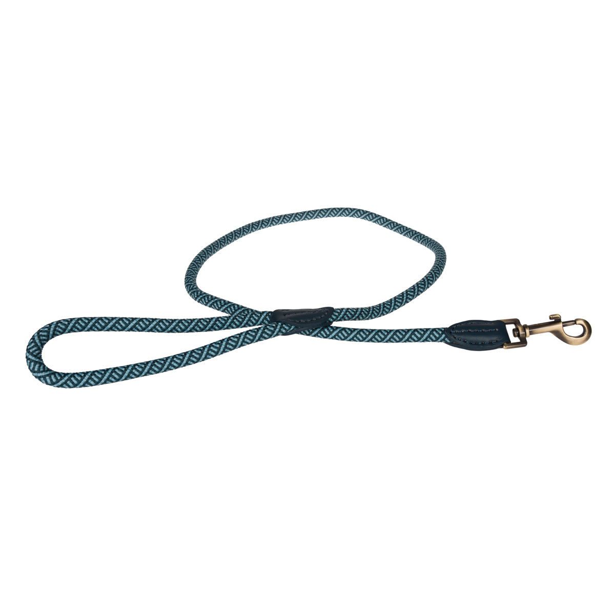 Teal Rope Lead