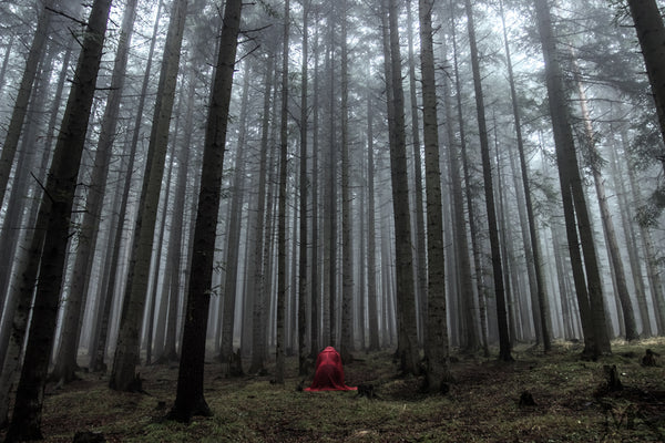 A person wearing a red cape kneeling in foggy woods
