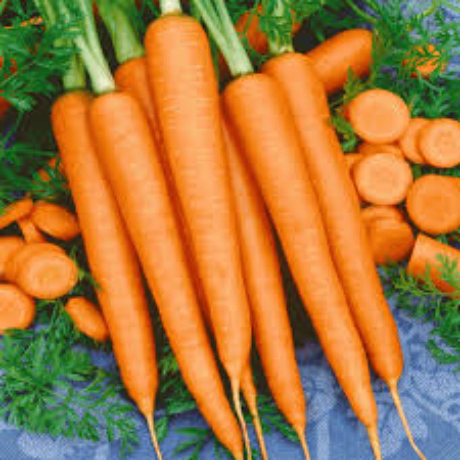 Tender Sweet Carrot Seeds