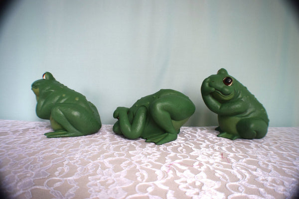 See No Evil, Hear No Evil, Speak No Evil | Frog Set