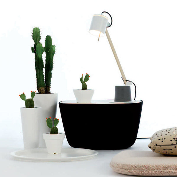 Plume Table Lamp by Fambuena