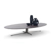 Fly Coffee Table by Flexform
